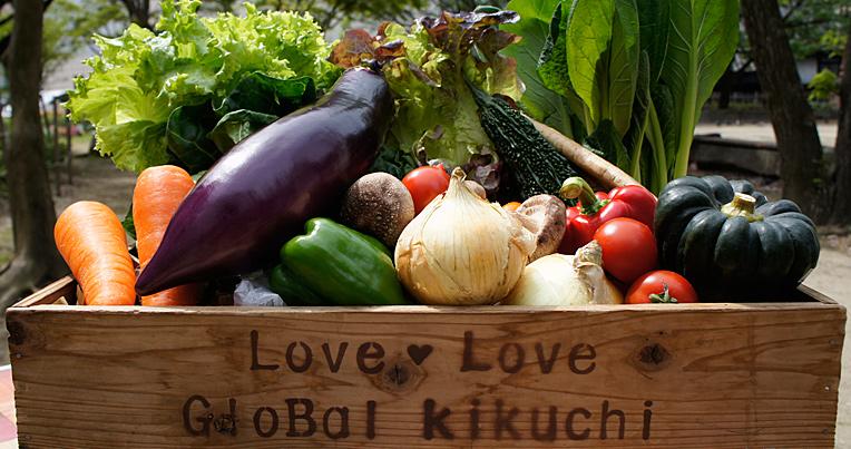 お試し・定期購入|九州・熊本のうまかもん エコファーマー認定九州野菜 お野菜の詰め合わせ