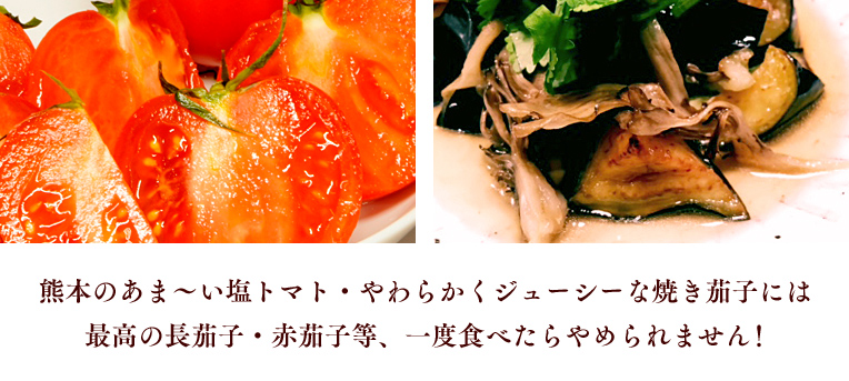 熊本のあま〜い塩トマト・やわらかくジューシーな焼き茄子には最高の長茄子等・赤茄子等、一度食べたらやめられません!