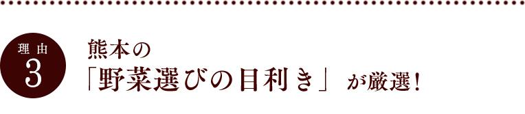 理由3|熊本の「野菜選びの目利き」が厳選!