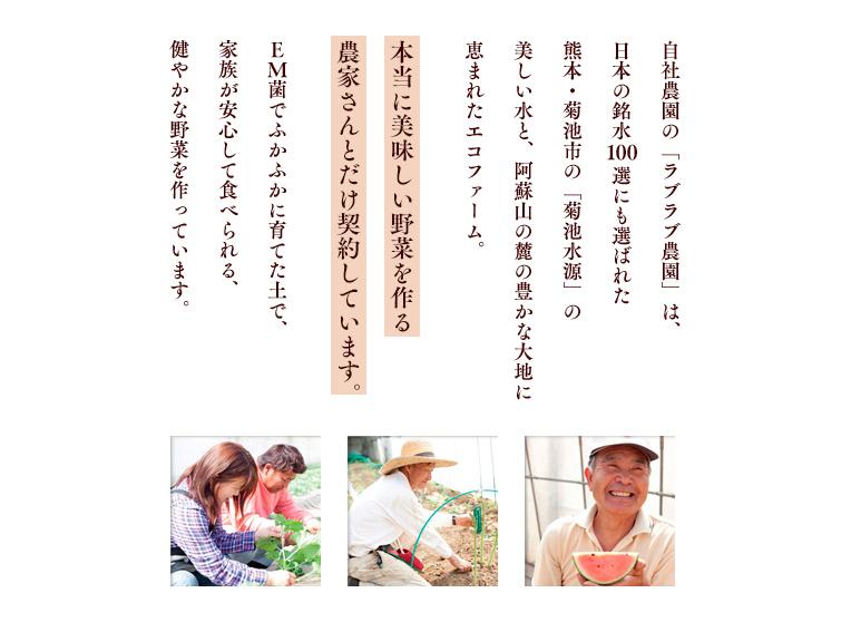 自社農園の「ラブラブ農園」は、日本の銘水100選にも選ばれた熊本・菊池市の「菊池水源」の美味しい水と、阿蘇山の麓の豊かな大地に恵まれたエコファーム。本当に美味しい野菜を作る農家さんとだけ契約しています。EM菌でふかふかに育てた土で、家族が安心して食べられる、健やかな野菜を作っています。